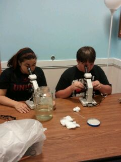 Diamond and Tim looking through microscopes in Biology