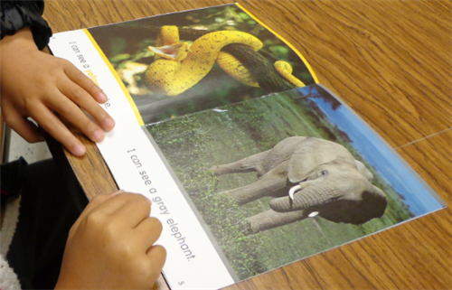 ESL student reading a non-fiction book